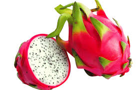 EastCoast Vapor E-Liquid Tropical Dragon Fruit
