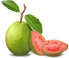 eastcoast vapor e-liquid guava