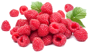 EastCoast Vapor E-Liquid Raspberry