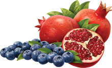 eastcoast vapor e-liquid blueberry pomegranate salt-nicotine