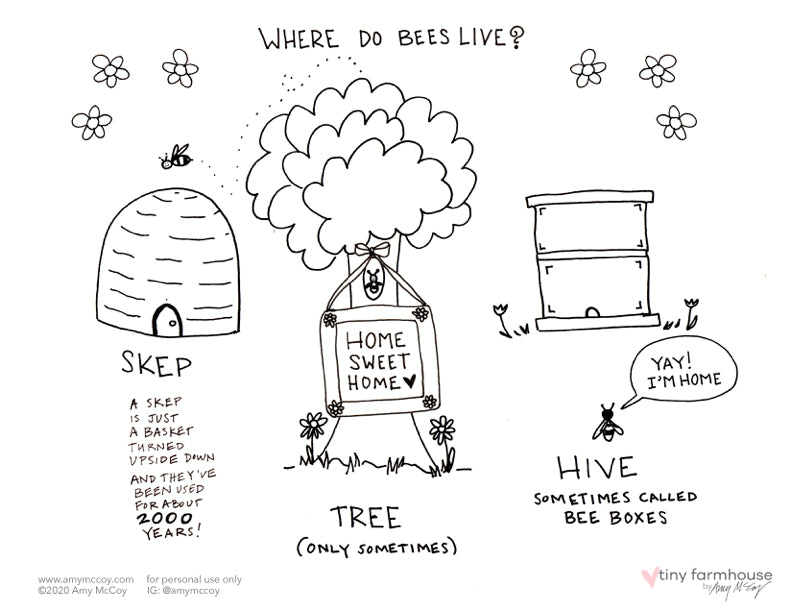 Where do Bees Live free coloring sheet - tiny farmhouse by Amy McCoy