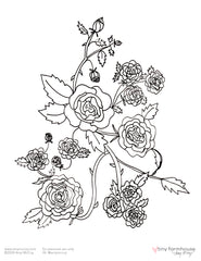 a free coloring sheet with a dozen roses to color in