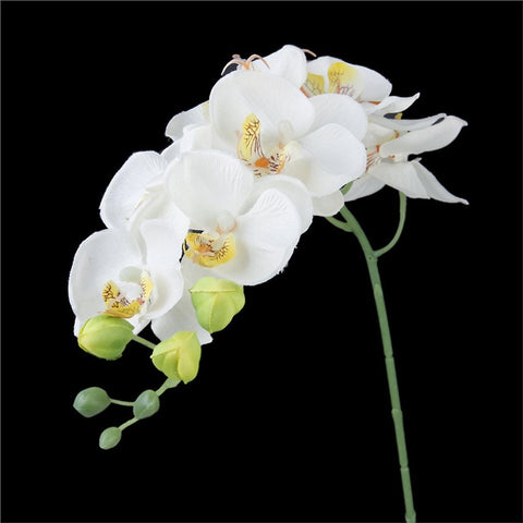 Artificial Butterfly Orchid Flower