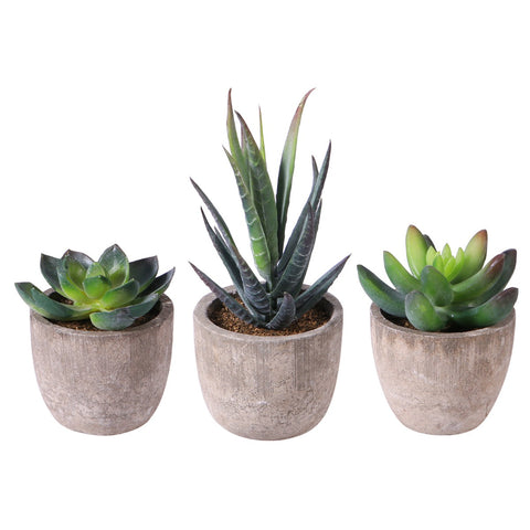 Decorative Artificial Succulent Plants with Pots
