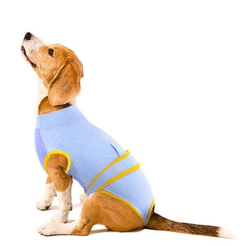 Blue Recovery Suit For Dogs & Cats After Surgery