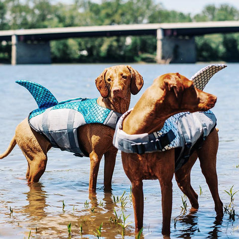 Fish Scale Pattern Pet Life Jacket For Dog