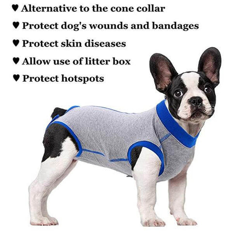 Professional Recovery Suit For Pet After Surgery