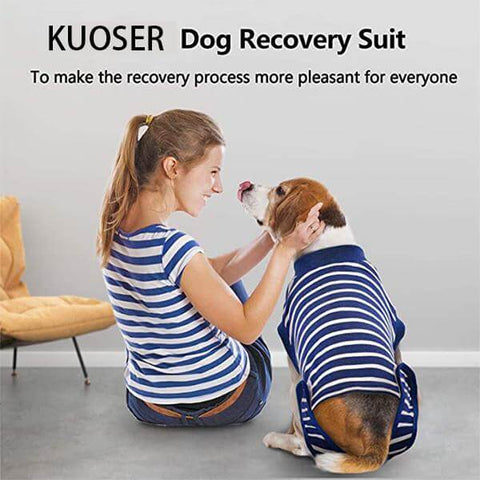 Stripe Recovery Suit For Dogs Cats After Surgery