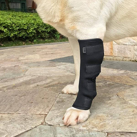 dog surgical recovery suit legs