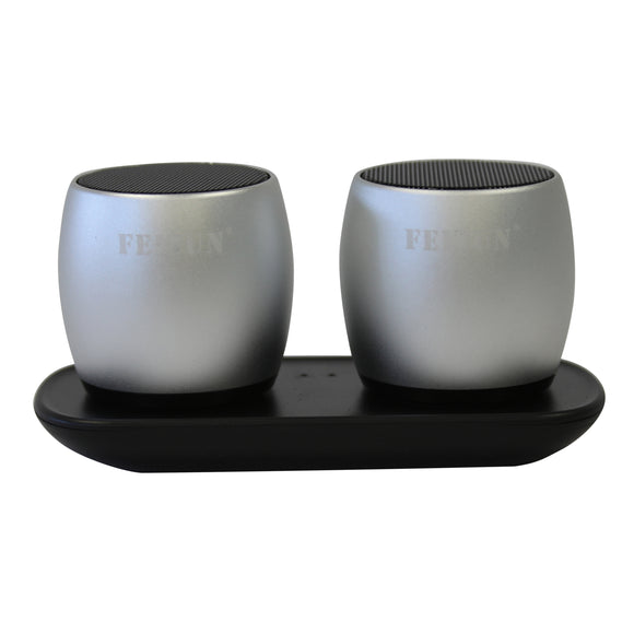 Feitun Twin Mini Bluetooth Speakers Pod (Silver)