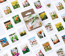 Load image into Gallery viewer, Tulip Stickers - Box of 45 - Tulip Polaroid Stickers, Polaroid Stickers, Photo Stickers, Flower Stickers, Floral Stickers, Vintage Stickers
