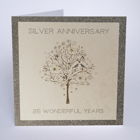 Silver Anniversary - 25 Wonderful Years