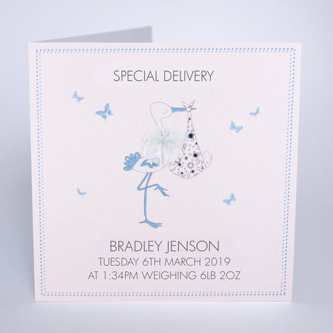 Special Delivery - Baby Boy (Stork)