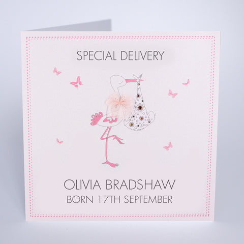 Special Delivery - Baby Girl (Stork)