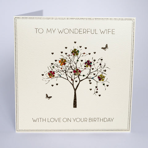 To My Wonderful Wife - On Your Birthday