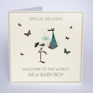 Special Delivery - New Baby Boy