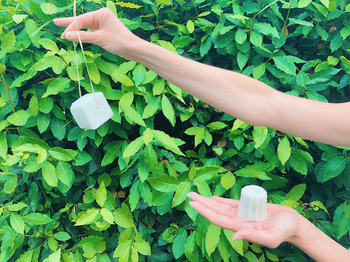 ZERO WASTE HAIR CARE: SOLID SHAMPOO - EVERYTHING YOU NEED TO KNOW