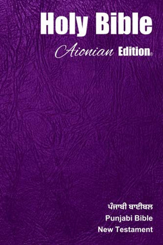 Holy Bible Aionian Edition: Punjabi Bible - New Testament (Punjabi Edition)