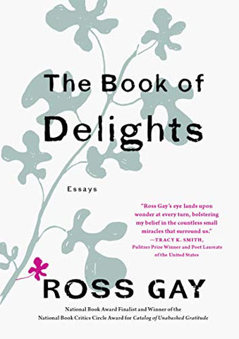 The Book Of Delights: Essays