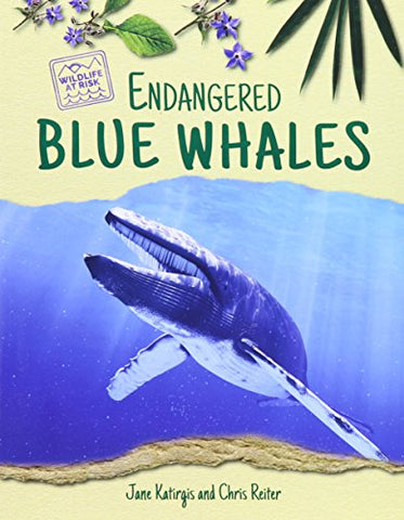 Endangered Blue Whales (Wildlife At Risk)