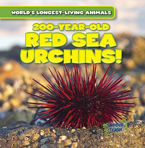 200-Year-Old Red Sea Urchins! (World'S Longest-Living Animals)