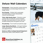 California, Wild & Scenic 2019 12 X 14 Inch Monthly Deluxe Wall Calendar, Usa United States Of America West Coast State Nature (Multilingual Edition)