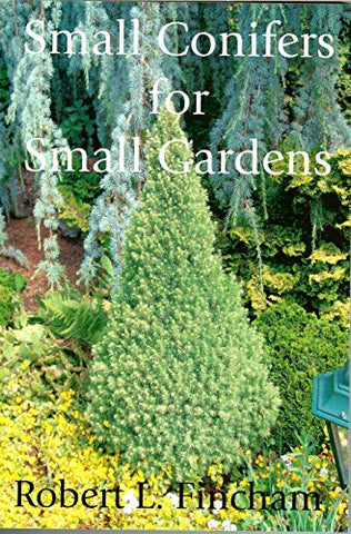 Small Conifers For Small Gardens
