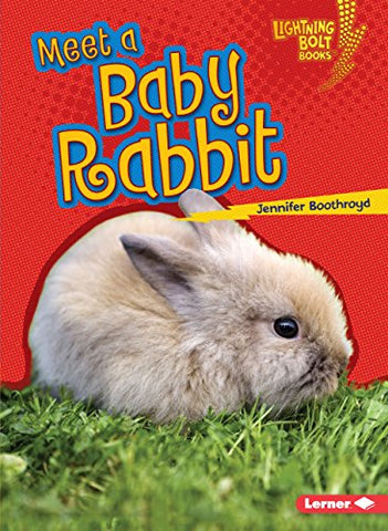 Meet A Baby Rabbit (Lightning Bolt Books   Baby Farm Animals)