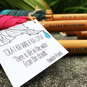 Hawaiian Proverb Tag