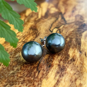Momi Shell Pearl Post Earring in Black