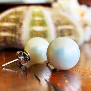 White 12mm shell pearls with sterling silver posts.