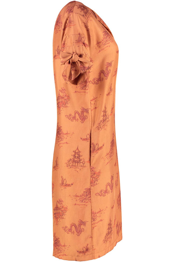Joanna Rust Silk Print Dress