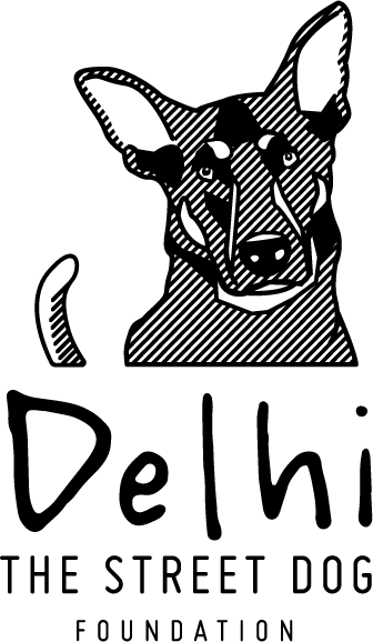 Delhi the street dog foundation
