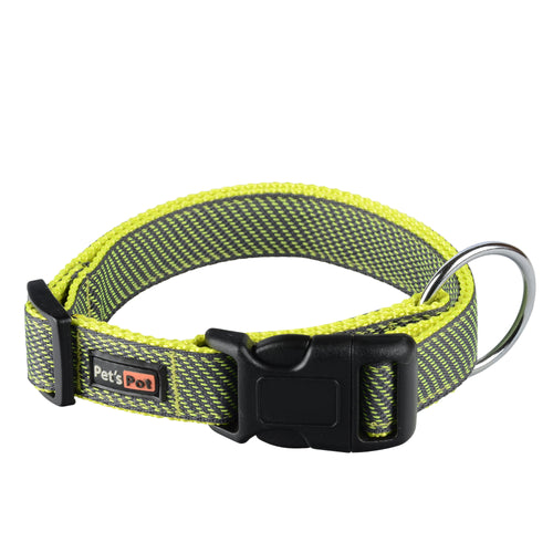 Alpha Sport Seva Stray Collars Helps Stray Dogs of India