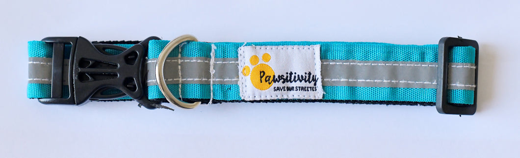 Donate a $1 Reflective Stray Dog Collar