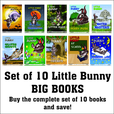 Little Bunny Big Books-set of 10