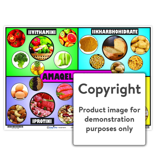 Amaqela Okutya ( Food Groups ) Wall Charts And Posters