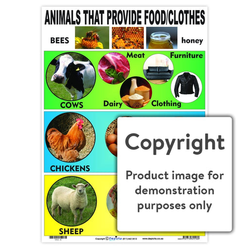 Animals That Provide Food/clothes Wall Charts And Posters