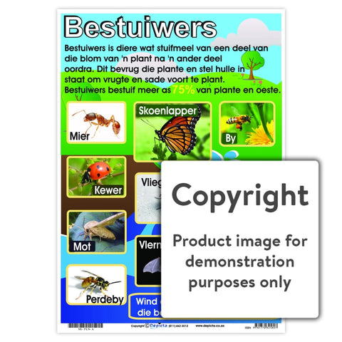 Bestuiwers Wall Charts And Posters