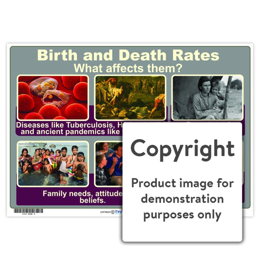 Birth And Death Rates Wall Charts Posters