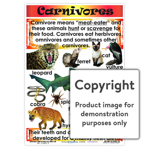 Carnivores Wall Charts And Posters