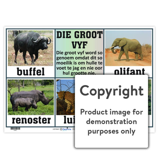 Die Groot Vyf Wall Charts And Posters