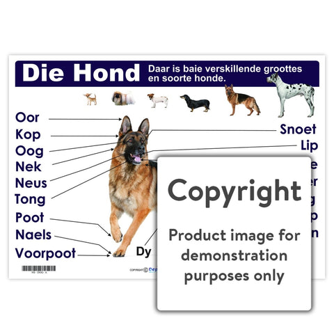 Die Hond Wall Charts And Posters