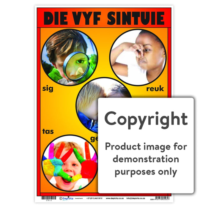 Die Vyf Sintuie Wall Charts And Posters
