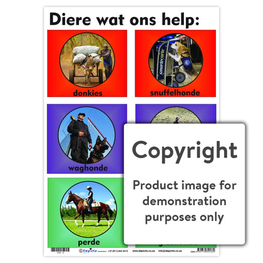Diere Wat Ons Help Wall Charts And Posters