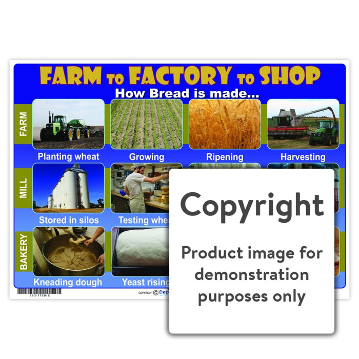Farm To Factory Shop - Bread Wall Charts And Posters