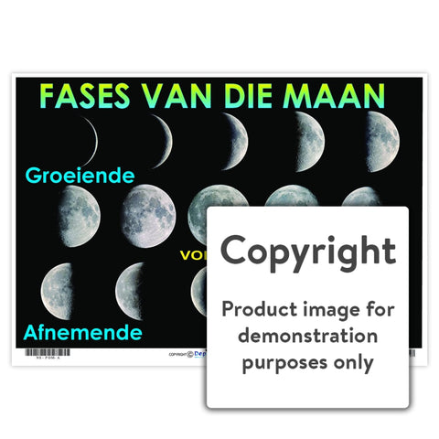 Fases Van Die Maan Wall Charts And Posters
