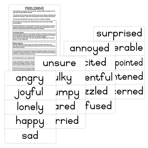 Feelings Flashcards Wall Charts And Posters
