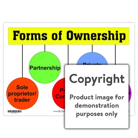Forms Of Ownership Wall Charts And Posters