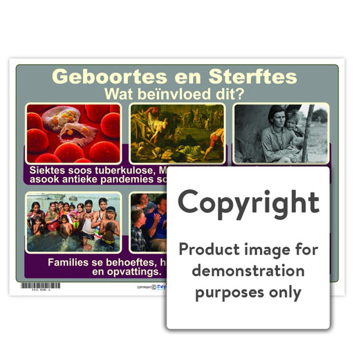 Geboortes En Sterftes Wall Charts And Posters
